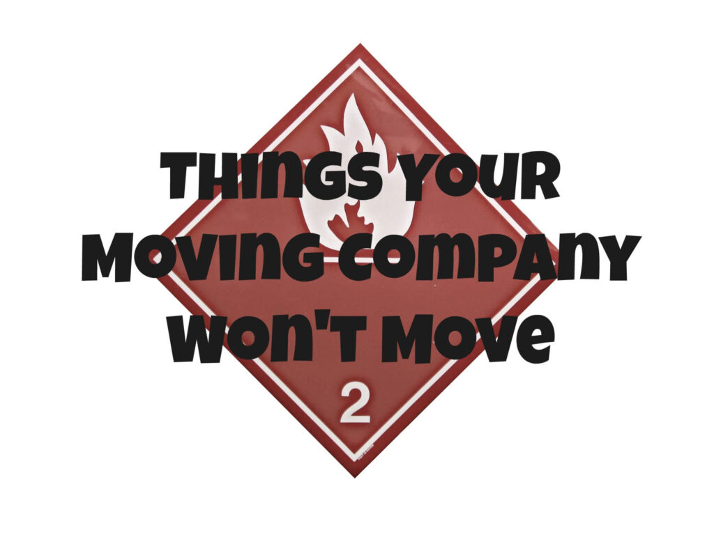 Things Your Moving Company Wont Move