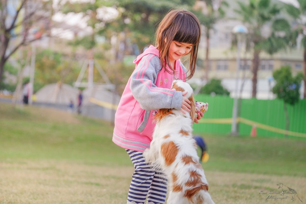 little girl petting dog
