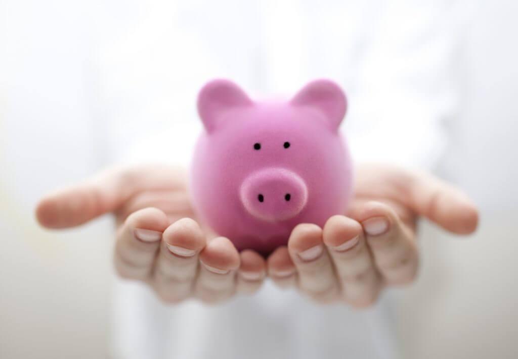 hands holding small piggy bank