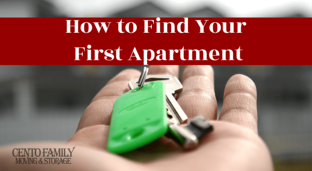 How to Find Your First Apartment