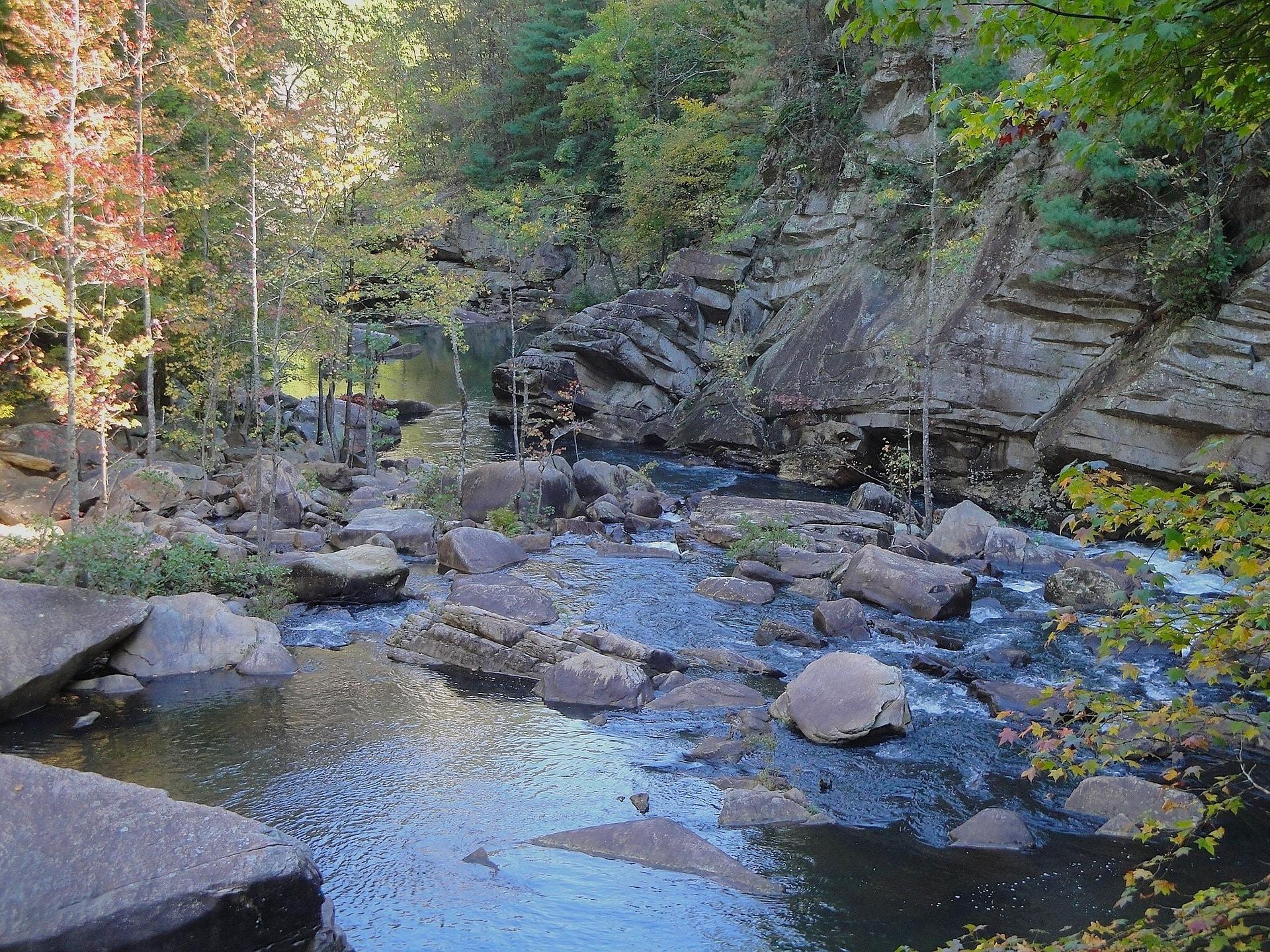 rocky stream in the Georgia mountains